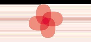 Hjernesagen logo